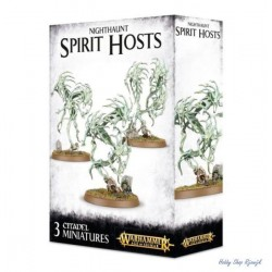 Nighthaunt, Spirit host