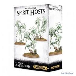 Nighthaunt, Spirit host